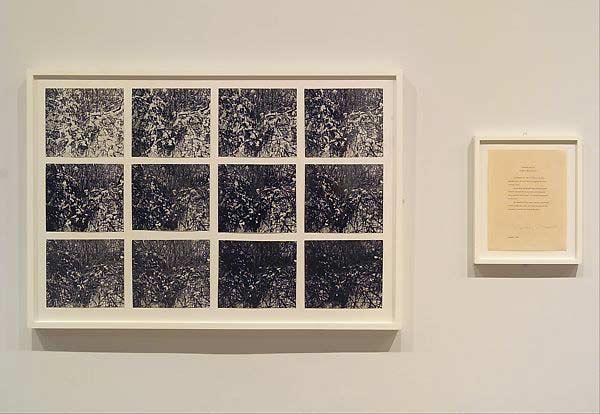 یک اثر از داگلاس هوبلر