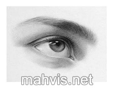 ابروهای های چشم