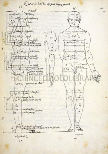 طراحی آموزشی قدیمی از آناتومی بدن