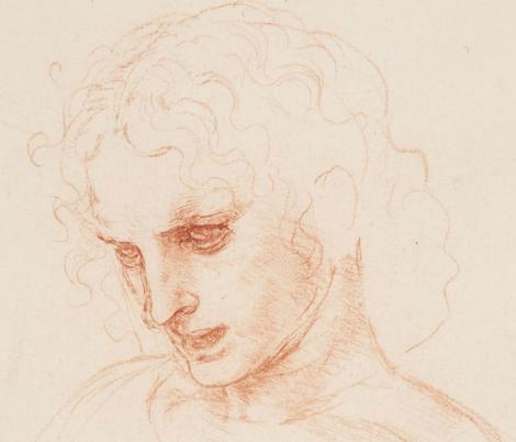 یک اسکیس چهره زیبا از لئوناردو