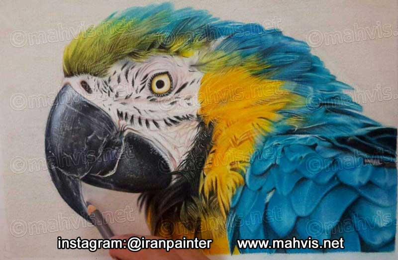 یک نمونه نقاشی مداد رنگی که توسط هنرجویان ایکاروس خلق شده است