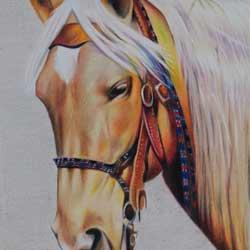 مداد رنگی اسب
